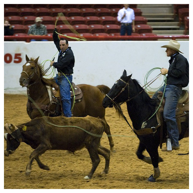 Top Rodeo in the USA
