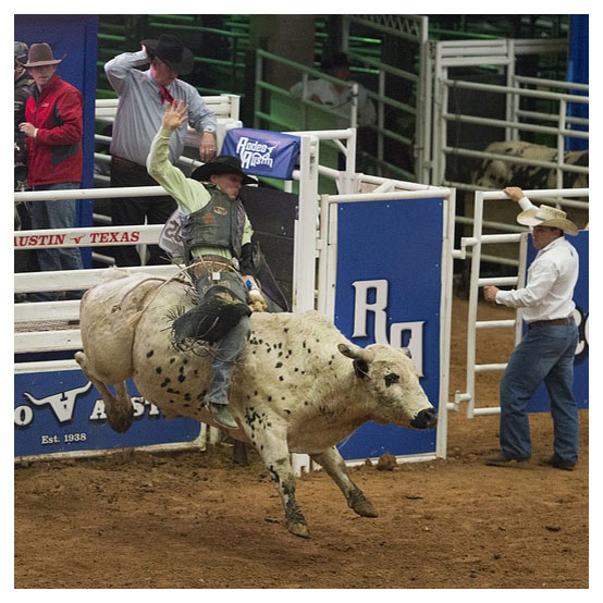 Top Usa Rodeo The Grizzly Rose