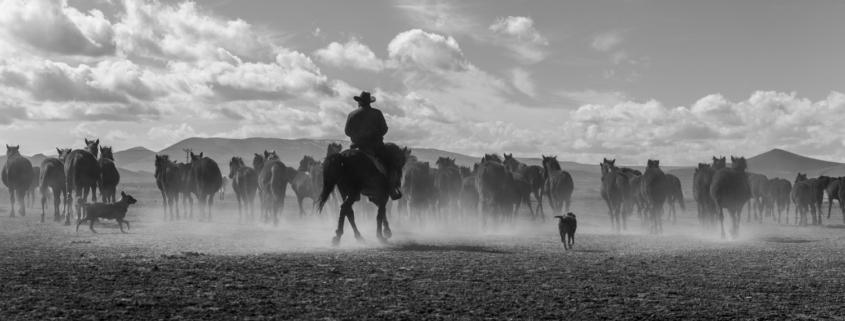 Top Western Movies