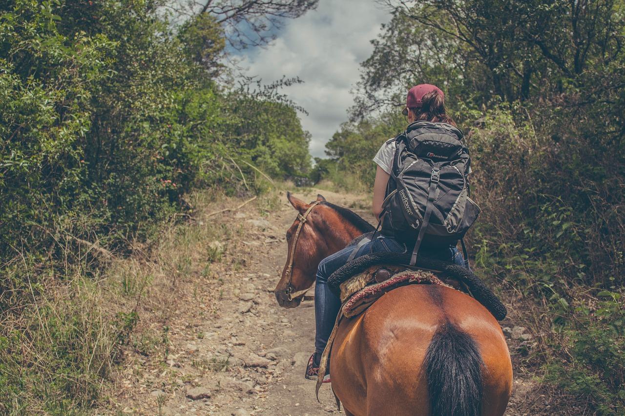 Riding A Horse Across The Usa