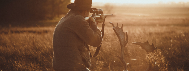 colorado hunters and wildlife